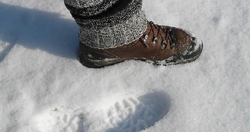 Zapato Invierno